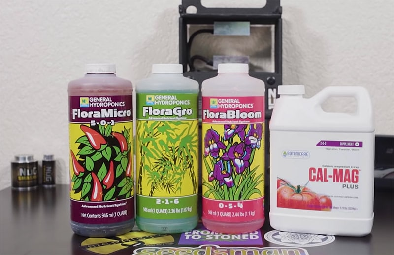 Hydroponics to grow cannabis