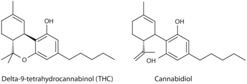 thc vs cbd chemistry